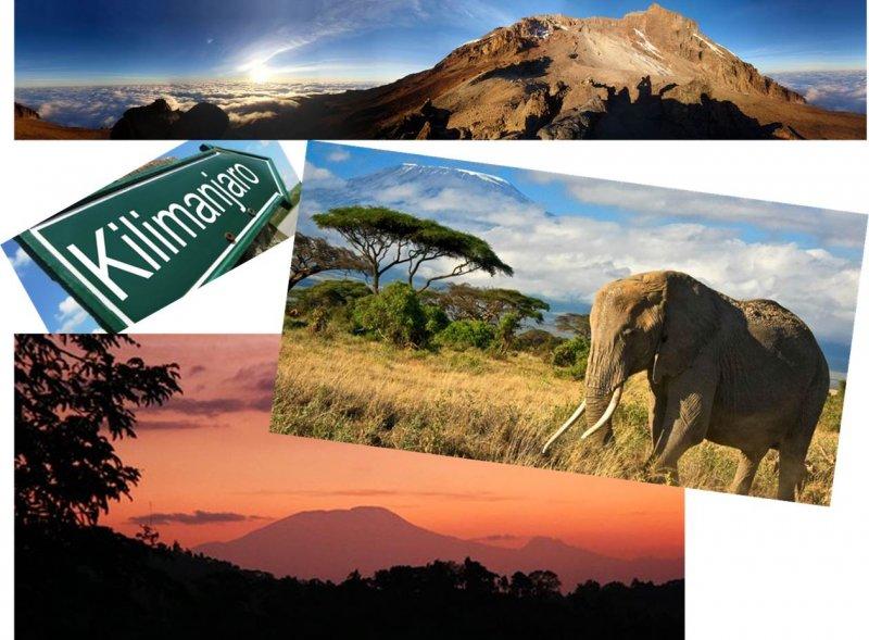 Kilimanjaro-2