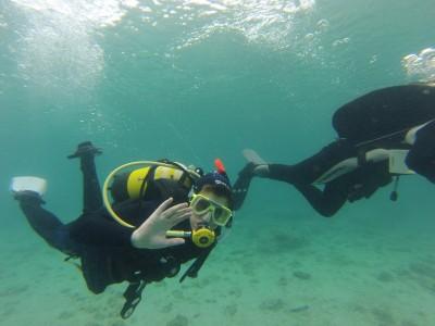 Croatia Dive 11