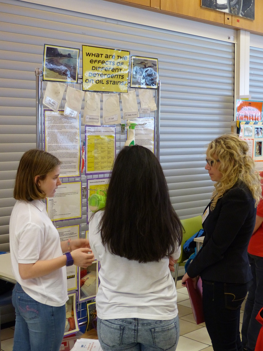 Science Fair March 2015 (17)