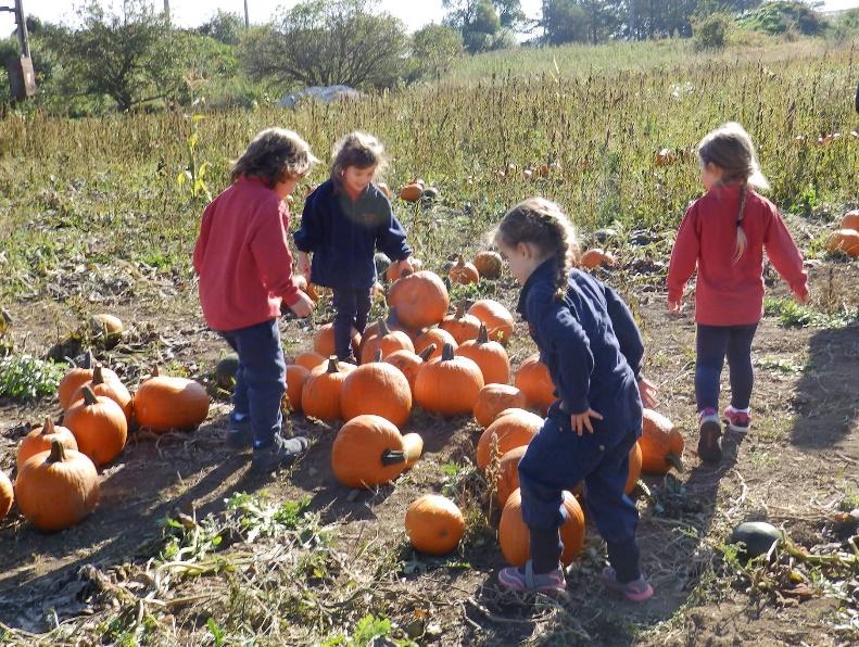 Early Years trip to Pumpkin Farm