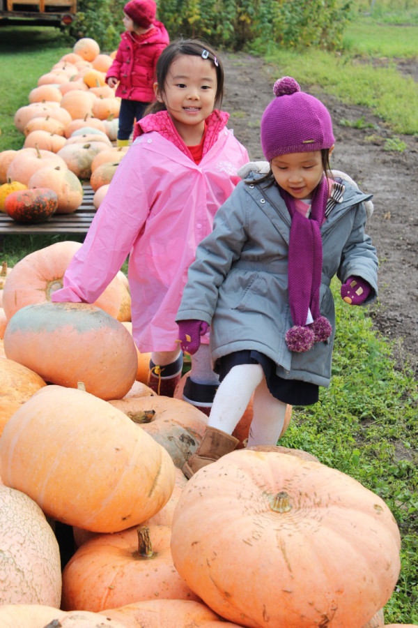 Early Years Harvest Breakfast and Trip to the Pumpkin Farm
