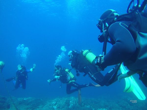 Spain Diving and Ecology Trip