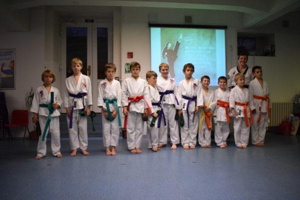 Taekwondo Testing