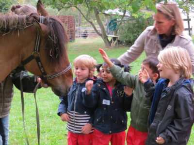 Photo for the article Early Years at the Pony Garden